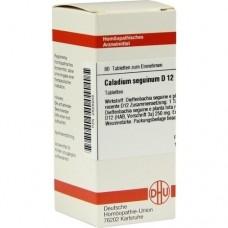 CALADIUM seguinum D 12 Tabletten 80 St