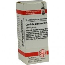 CANDIDA albicans C 200 Globuli 10 g