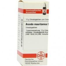 ARUNDO mauritanica D 4 Globuli 10 g