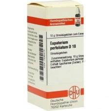 EUPATORIUM PERFOLIATUM D 10 Globuli 10 g