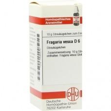 FRAGARIA VESCA D 6 Globuli 10 g